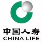 中国人寿保险股份有限公司腾冲市支公司